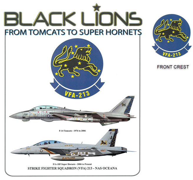 Black Lions Transition - F-14 to F-18